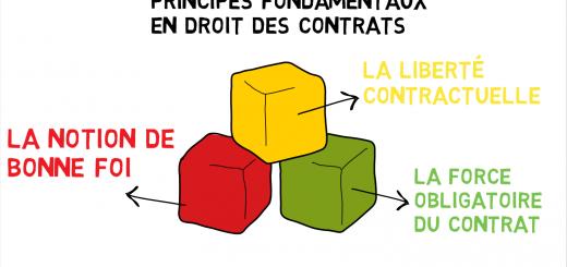 liberté contractuelle